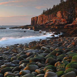 Dawn's Early Light by Stephen  Vecchiotti