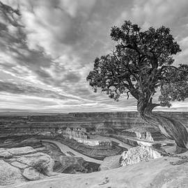 Dead Horse Point Sunrise in Black and White by Dustin  LeFevre
