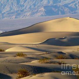 Death Valley Sand Dunes by Eva Kato