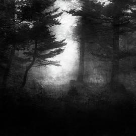 Theresa Tahara - Deep In The Dark Woods