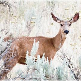 Athena Mckinzie - Deer In The Brush