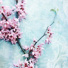 Delicate Blossoms by Stephanie Frey