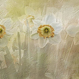 Diane Schuster - Delightful Daffodils