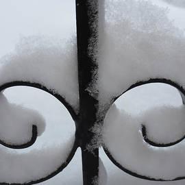 Dominique Fortier - Dentelle de neige / Lacy Snow