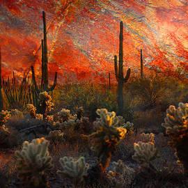 Barbara Manis - Desert Burn