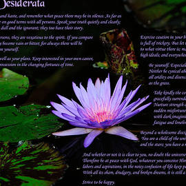 Desiderata 2 by Greg Norrell