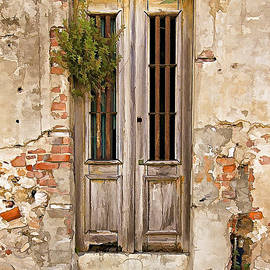 David Letts - Dilapidated Brown Wood Door of Portugal