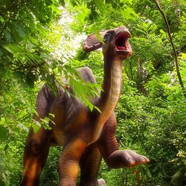 Thomas Woolworth - Dino