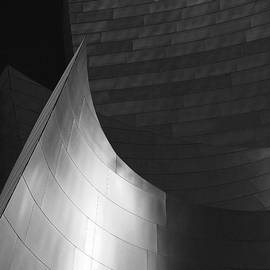 Rona Black - Disney Hall Abstract Black and White