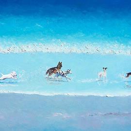 Dog Splash by Jan Matson