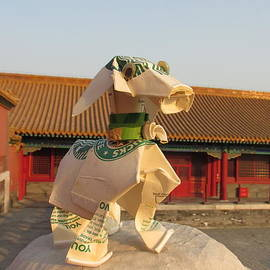 Doggie At Forbidden City by Alfred Ng