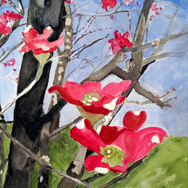 Sandy McIntire - Dogwood Flowers