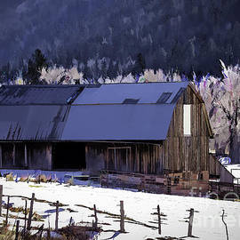 Dolores Colorado Barn by Janice Pariza