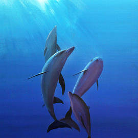 Bill Dunkley - Dolphins at Play
