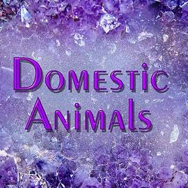 Domestic Animals by Donna Proctor
