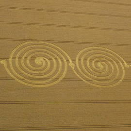 Denise Mazzocco - Double Spiral Crop Formation