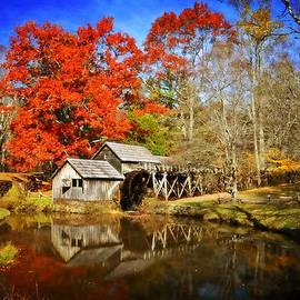 Down By The Old Mill Stream  by Lynn Bauer