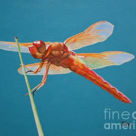 Jimmie Bartlett - Dragonfly