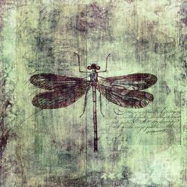 Dragonfly by Priska Wettstein