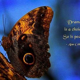 Mike Flynn - Drama Is a Choice