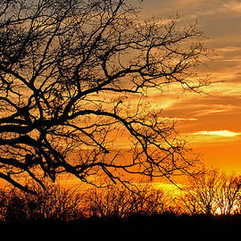 Dramatic Sunset  by Jeanne May