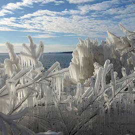 Draped In Icy Beauty by James Peterson