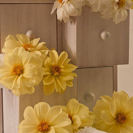 Sandra Foster - Drawers Of Dahlias