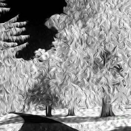 Paul W Faust -  Impressions of Light - Dream Trees