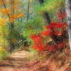 Dreaming Of Fall by Kristin Elmquist