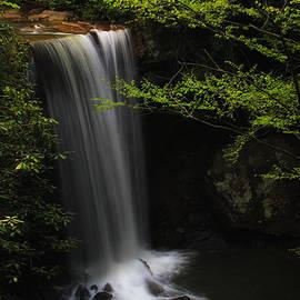 Dreamy Cucumber Falls by Rachel Cohen