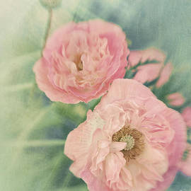 Pastel  by Priska Wettstein