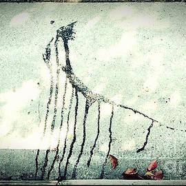 Fei Alexander - Dripping Ancient