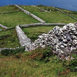 Aidan Moran - Dry Stone Wall