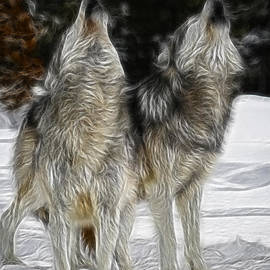 Wes and Dotty Weber - Dual Howl