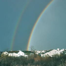 Roger Fink - Duel Rainbows over suburbia