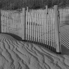 Suzanne Gaff - Dune Fence in Black and White