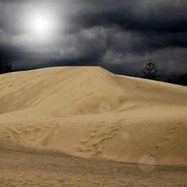 Flow Fitzgerald - Dune