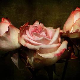 Blair Wainman - Dusty Rose