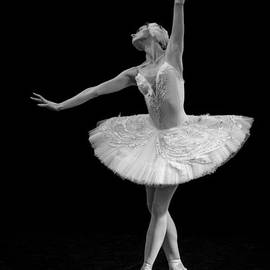 Clare Bambers - Dying Swan 9.