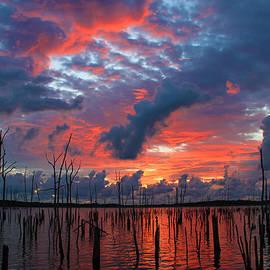 Early Dawns Light
