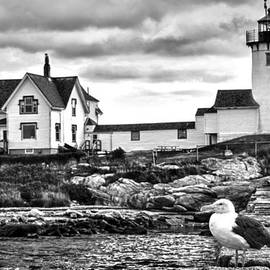 Christian Anderson - Eastern Point Lighthouse