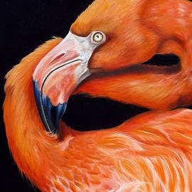 Ego by Phyllis Beiser