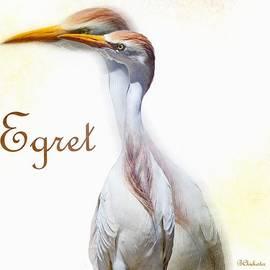 Egret by Barbara Chichester