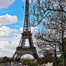 Eiffel Tower in Spring by Elvis Vaughn
