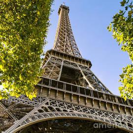 Eiffel Tower- Looking Up by Rhonda Krause