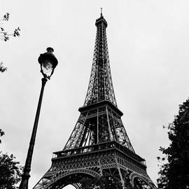 Eiffel Tower  by Maj Seda