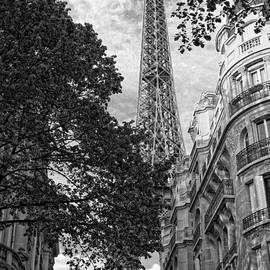 Eiffel Tower  by Timothy Hacker