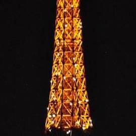Eiffel Tower with French Flag by Csilla Florida