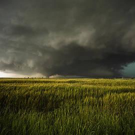 Douglas Berry - El Reno Tornado