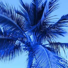 Timothy Curtin - Electric Blue Palm Tree